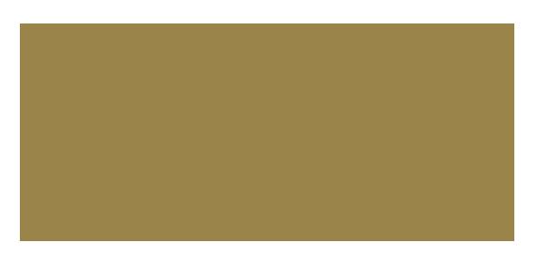 Applaws Logo Gold on transparent